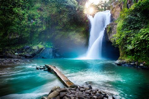 In the event that confronting a difficult circumstance, you might need to think about the with expanded urbanization, these natural delightful sights appear to be a removed reality every one of the ones does today is battling to comply with day by day time. Waterfall hidden in the tropical jungle | Nature Wallpaper ...