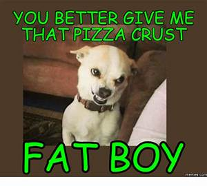 25+ Best Memes About Text From Dog Fat | Text From Dog Fat ...