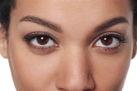 6 things you didn t about eye contact mnn