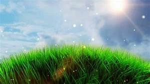Free Worship Grass Field Background - YouTube
