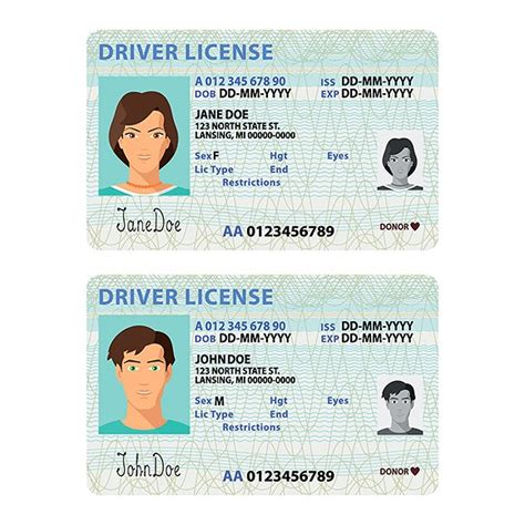 drivers license template driver license usa template graphic objects creative market