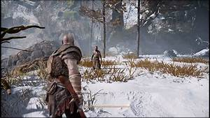 Cdpr Is Looking Into Draw Distance Issues For Witcher 3