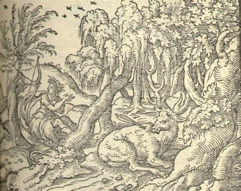 Week  Ovids Metamorphoses