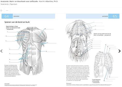Grau anatomie 8x13 herunterladen bereits | hochnesora