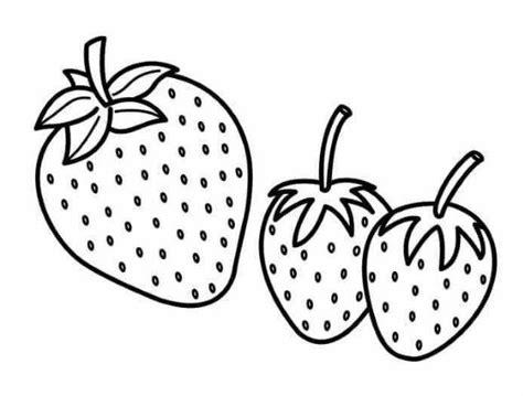 22 Desenhos de frutas para imprimir e colorir Educação