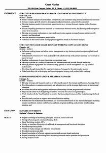 strategy business manager resume samples velvet jobs With business manager resume template