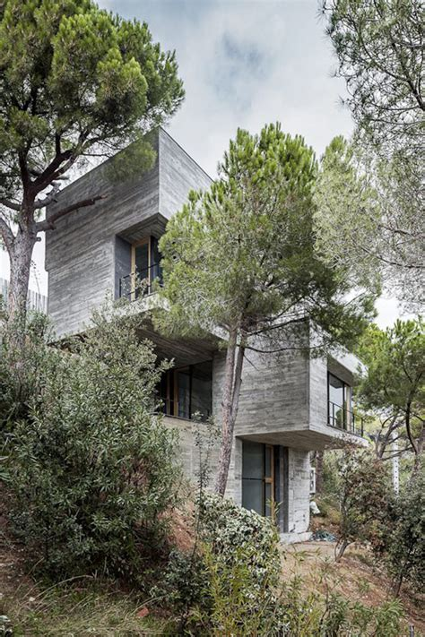 steep slope house design  vertical   trees