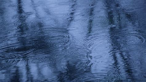 beautiful rain drops pics hd wallpapers