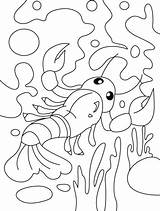 Coloring Lobster Pages Finding Way Its Water Animals Sheets Colouring Bestcoloringpages Kindergarten Animal Amphibians Classroom Worksheets Preschool Foreseeing Octopus sketch template