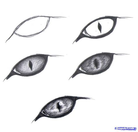 realistic   draw  beginners google search