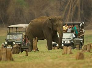 Nagarhole National Park Karnataka