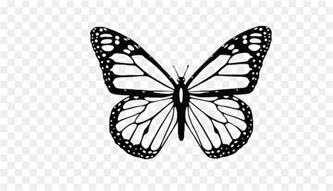 butterfly black  white png