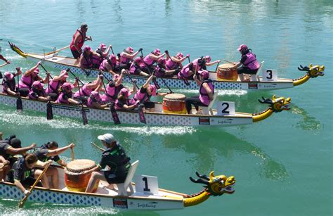 Dragon Boat Racing Breast Cancer by Pink Dragons Breast Cancer Dragon Boat Team Auckland Nz