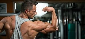 The 3 Best  And Worst  Muscle Building Supplements