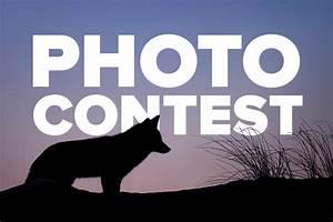 2018-2019 Photo Contest | Pennsylvania Trappers Association  Contest