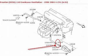 Chevy S 10 Intake Diagram Html
