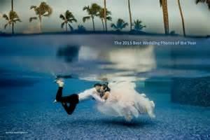 best wedding photos the 2015 best wedding photos of the year