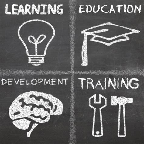 whats  difference  training education