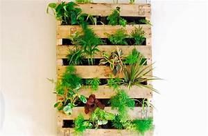 Grüne Wand Selber Bauen : indoor g rtnern inspirationen f r pflanzk rbe ~ Bigdaddyawards.com Haus und Dekorationen