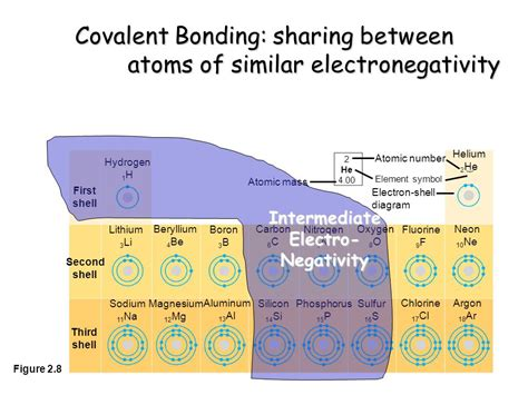 Carbon Electronegativity The Chemical Context Of Life Atoms Bonding Molecules