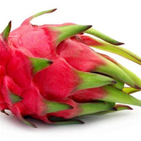 pitahaya assortment special fruit