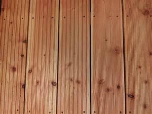 Douglasie Oder Lärche : terrassendielen terrassenbel ge holzgro handel holzfachmarkt holz rentsch dresden ~ Eleganceandgraceweddings.com Haus und Dekorationen