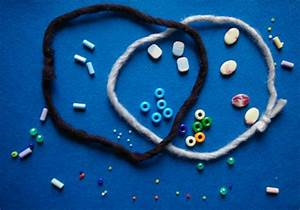 Venn Diagrams And Beads