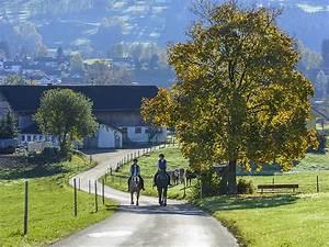 Pferde Kaufen Bremen : reitanlage pferdehof reiterhof kaufen bei ~ Orissabook.com Haus und Dekorationen