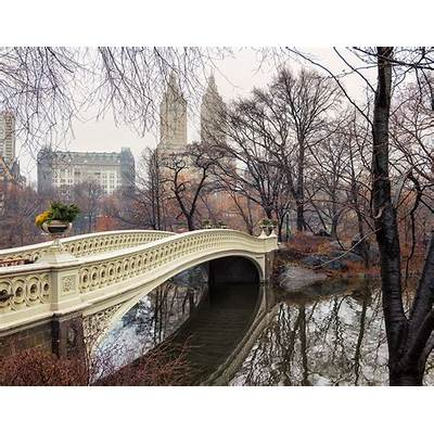 Bow Bridge Central Park NYC by Timothy HydeSusan