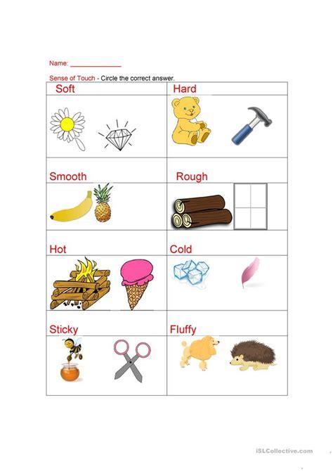 senses sense  touch worksheet  esl printable