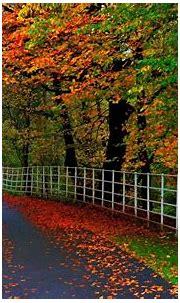 Wallpaper Most Beautiful Nature – HD Wallpapers , HD ...