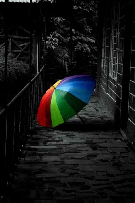 umbrella touch  color color  world color splash