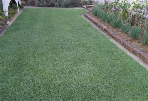 Turf & Lawn Suppliers