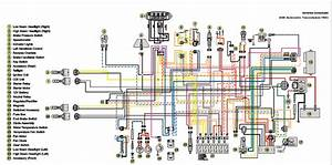 2005 Artic Cat Wiring Diagram