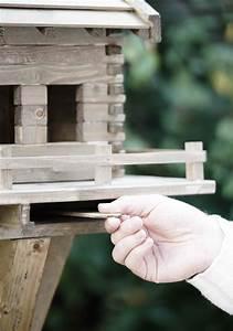 Schublade Selber Bauen : schublade hand vogelhaus selber bauen mit der richtigen bauanleitung ~ Sanjose-hotels-ca.com Haus und Dekorationen