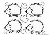 Hedgehog Coloring Pages Line Kindergarten Drawing Printable Preschool Print Drawings Getdrawings Getcolorings sketch template