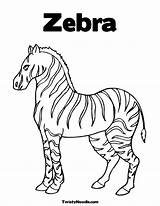 Coloring Zebra Without Stripes Drawing Colouring Template Printable Stripe Sketch Familia Worksheet Pdf Getdrawings Popular Coloringhome Worksheeto Sheets Trending Days sketch template