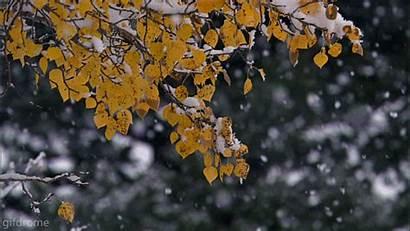 Snow Animated Falling Winter Christmas Heart Google