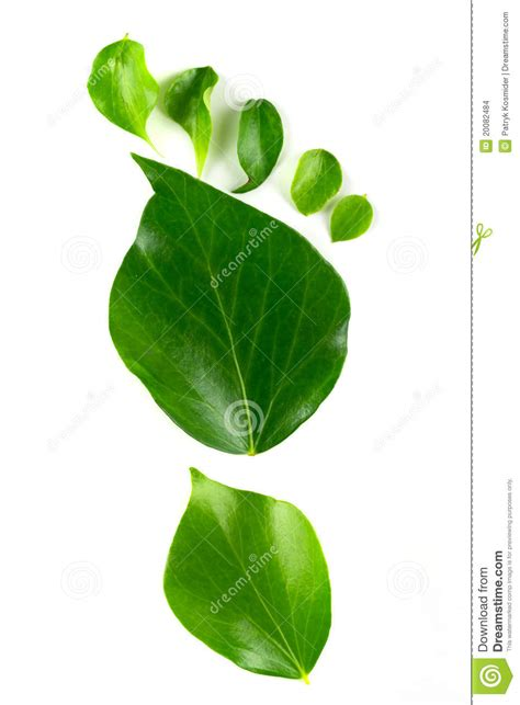 ls made from leaves eco footprint made from leaves stock images image 20082484