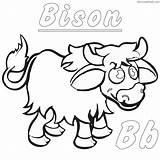 Bison Coloring Printable Ndsu sketch template