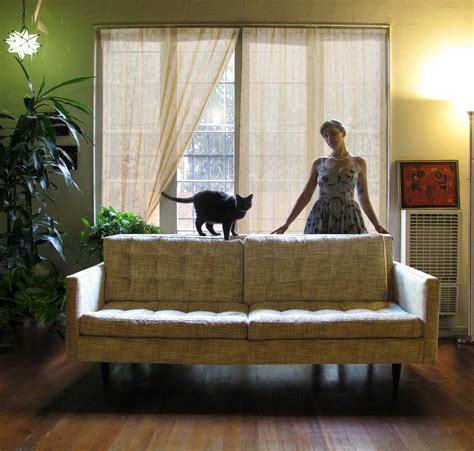 The Living Room Or Not Cat by Glamorous Sofa Company Vogue Los Angeles Contemporary