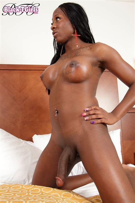 Nuevacarpeta3black Shemale Candy Angel 04 Porn