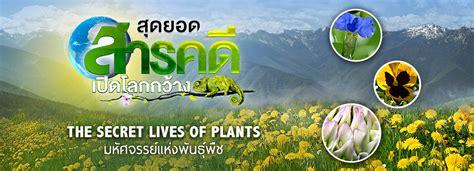 สุดยอดสารคดีเปิดโลกกว้าง มหัศจรรย์แห่งพืชพันธุ์ The Secret ...