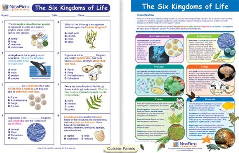 The Kingdoms Of Life  Nature Kingdoms