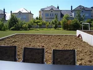 Gabionenzaun Mit Hecke : die hecke am laufenden meter zaun pflanzen oder hecke bauen moderner sichtschutz im garten ~ Orissabook.com Haus und Dekorationen