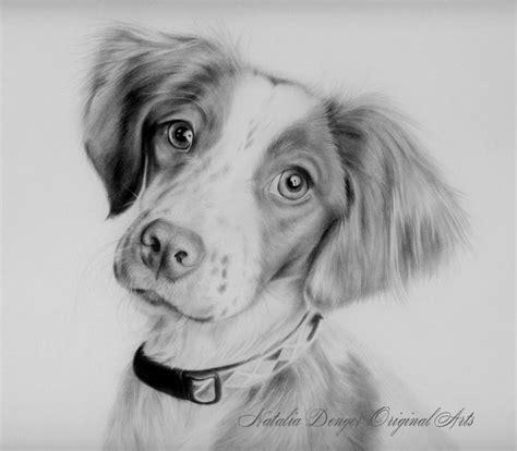 custom portrait  pet portrait animals dog cat