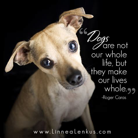 Quotes Dogs Being Part Family