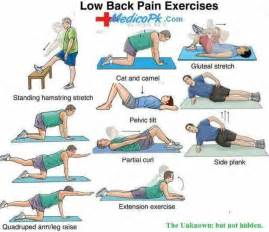 Stretching Exercises Lower Back Pain