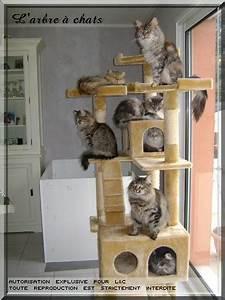 Arbre À Chat Pour Gros Chat : arbre a chat gros chat ~ Nature-et-papiers.com Idées de Décoration