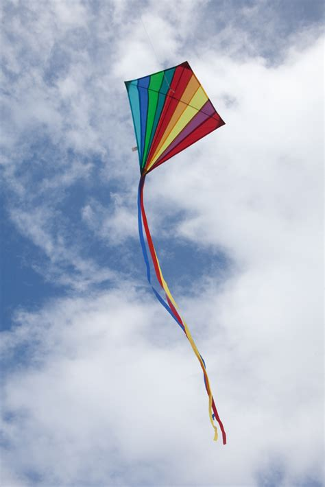 Go Fly A Kite  Behrman House Publishing
